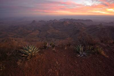 epic winter hikes south rim loop in big bend national park succulent overlook