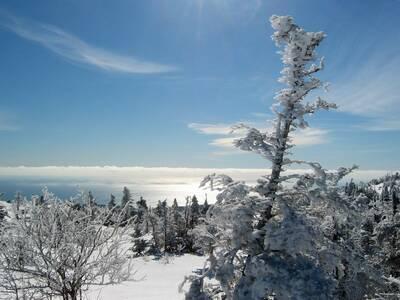 south ridge trail cadillac mountain summit winter
