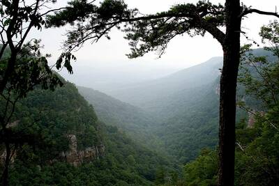 west rim loop in cloudland canyon fog