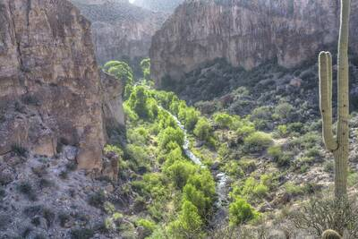 aravaipa canyon wilderness BLM featured