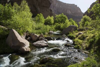 aravaipa canyon wilderness BLM creek