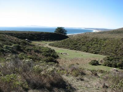 point reyes Point Reyes Forest to Sea Hike coast camp