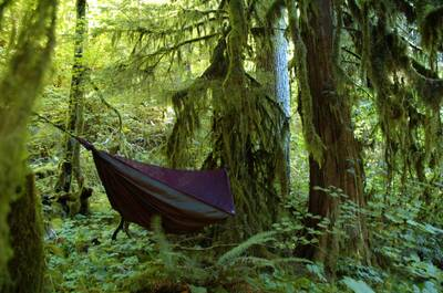 how to bug proof your hammock featured