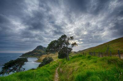 how to maintain a trail community highlight new zealand