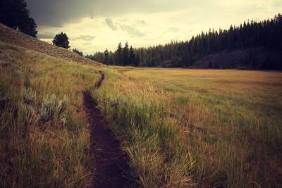 how to maintain a trail community highlight unsplash