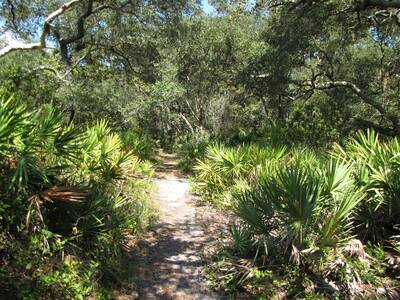 long hikes backpackers will love florida trail