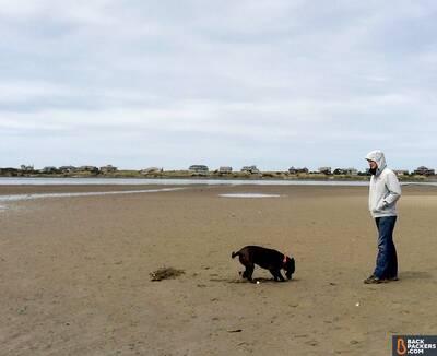 the-north-face-dryzzle-jacket-review-dog-shrimp-digging
