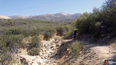 Sea-to-Summit-Comfort-Plus-Insulated-Review-ojai-trail