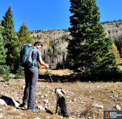Salomon-XA-Pro-3D-review-hike-with-the-dog