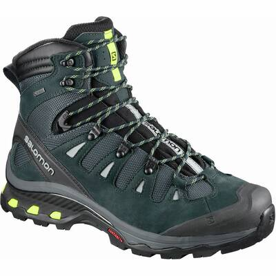 Salomon Quest 4D GTX 3 best hiking boots