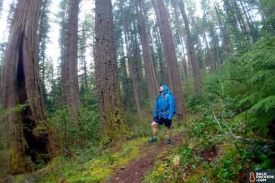 Zpacks-Vertice-review-hiking-in-the-woods