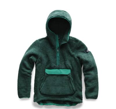 The North Face Campshire best fleece jackets