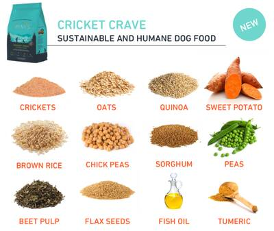 Jiminy's sustainable Cricket Dog Food and treats cricket crave ingredients