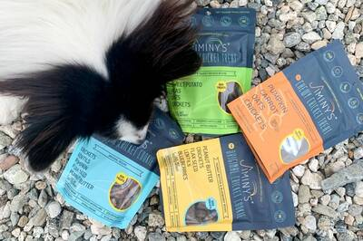 Jiminy's-Sustainable-Dog-Treats-smelling-treats