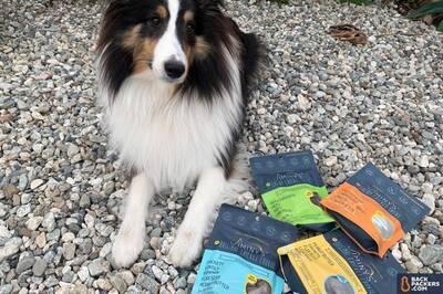 Jiminy's-Sustainable-Dog-Treats-treats-plus-dog