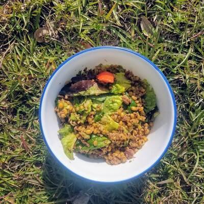 BLT grain bowl
