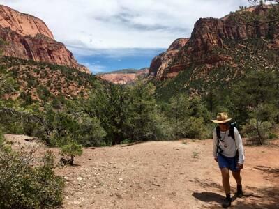 Wild Wanderer in Zion